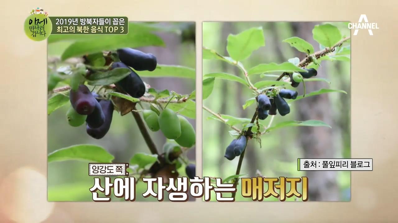 이만갑 식구들이 추천하는 북한 간식! '양강도 매저지'....