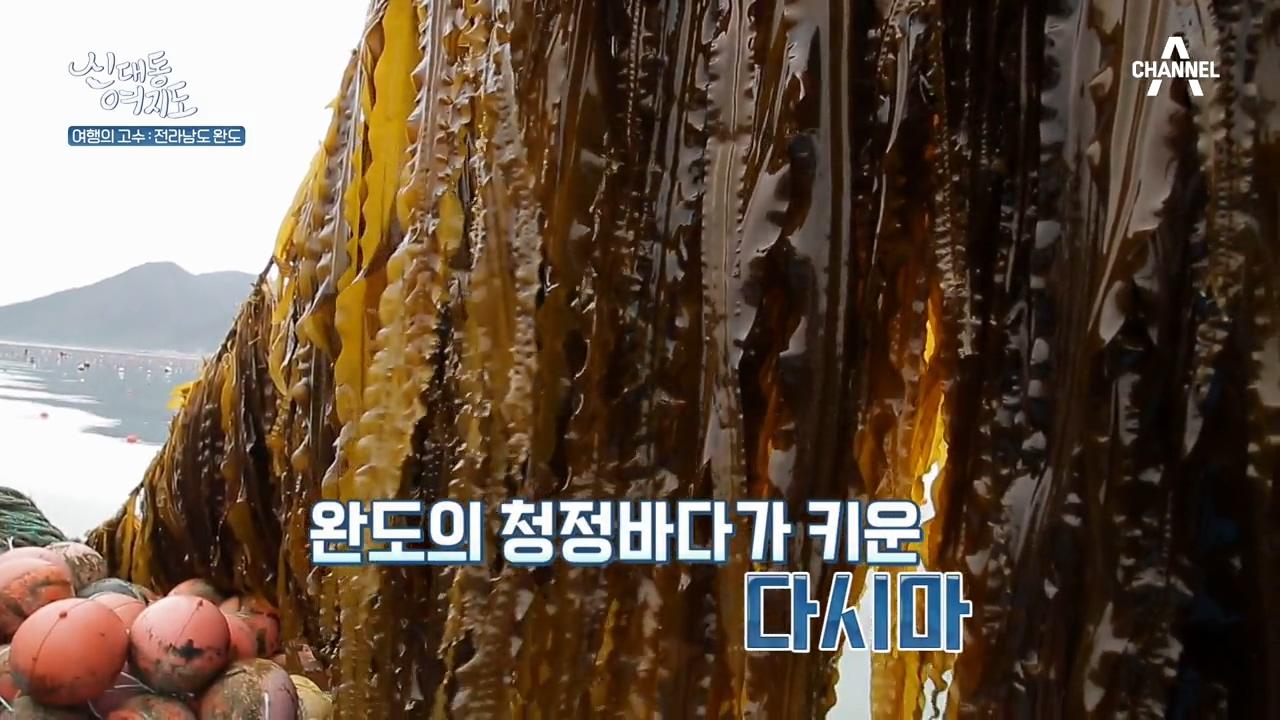 신대동여지도 286회