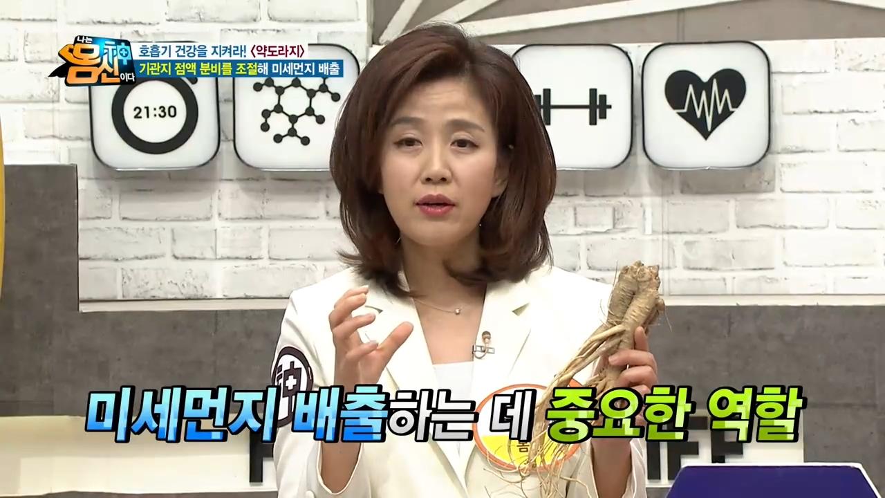 미세먼지를 배출하는 [청숨차] '도라지'와 '박하'의 ....