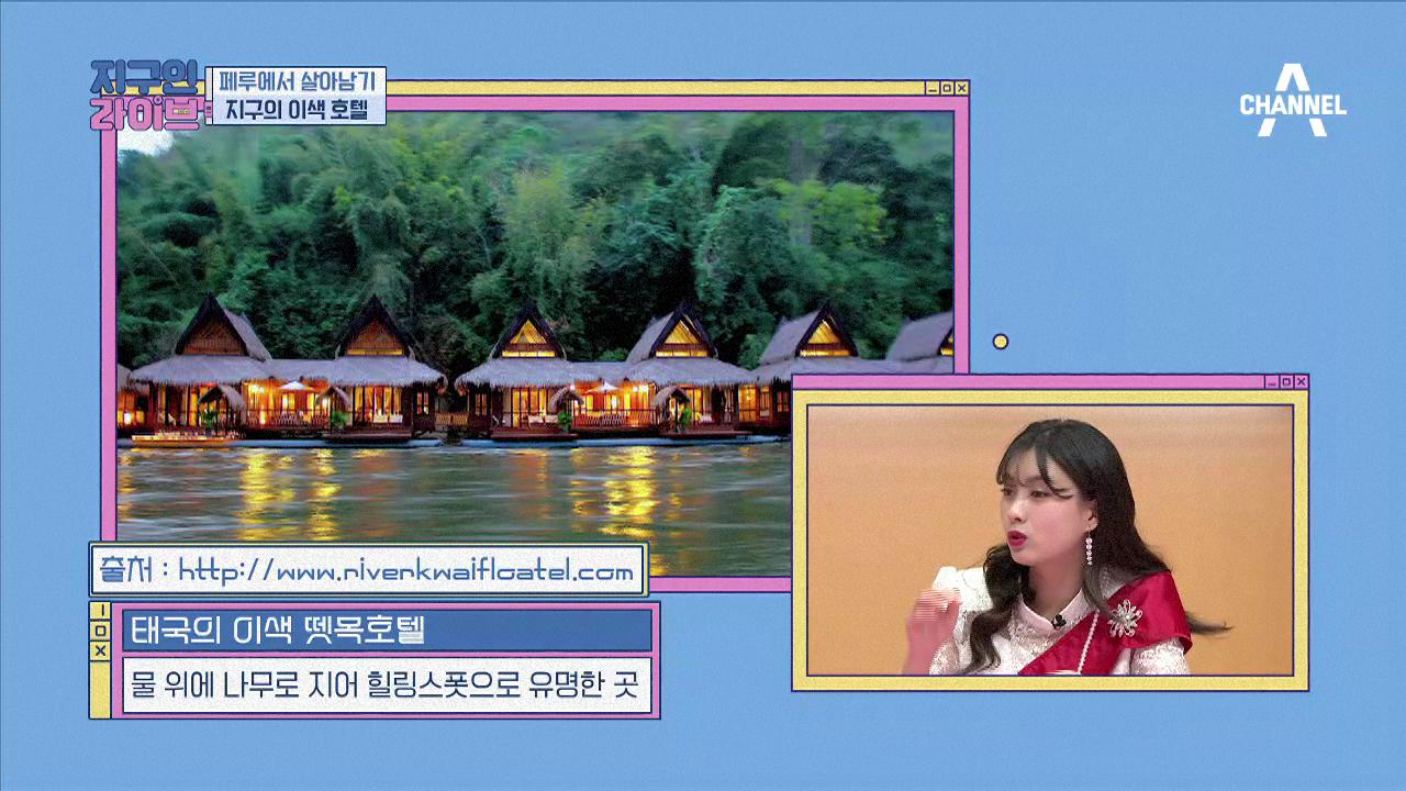 [선공개] 이런 이색호텔 가보았나? #로봇호텔 #뗏목호....