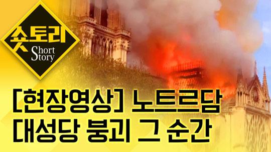 [현장영상] 화마에 무너져 내린 노트르담 대성당(숏토리....