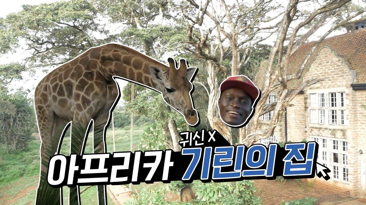 '동물의 왕국' 케냐의 이색호텔 최고봉 기린호텔에 가다....