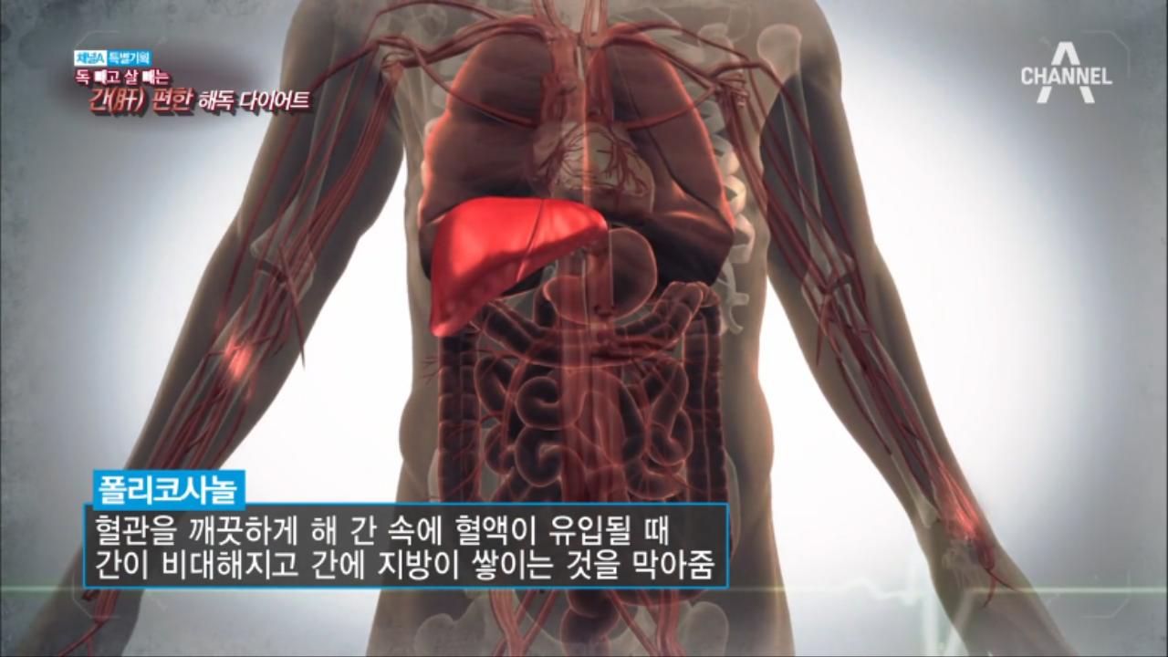 [특별기획] 독빼고 살빼는 간편한 해독 다이어트