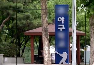 """우후죽순 '스타표' 야구 교습소…""""몇 개인지도 몰라"""""""