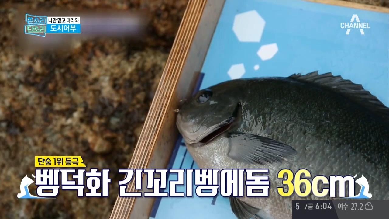 '채널A 시청자 마당' 396회