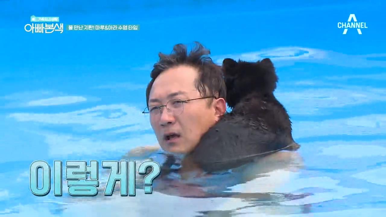 이곳이 애견 천국?! 마루x아라의 생애 첫 수영 도전기....