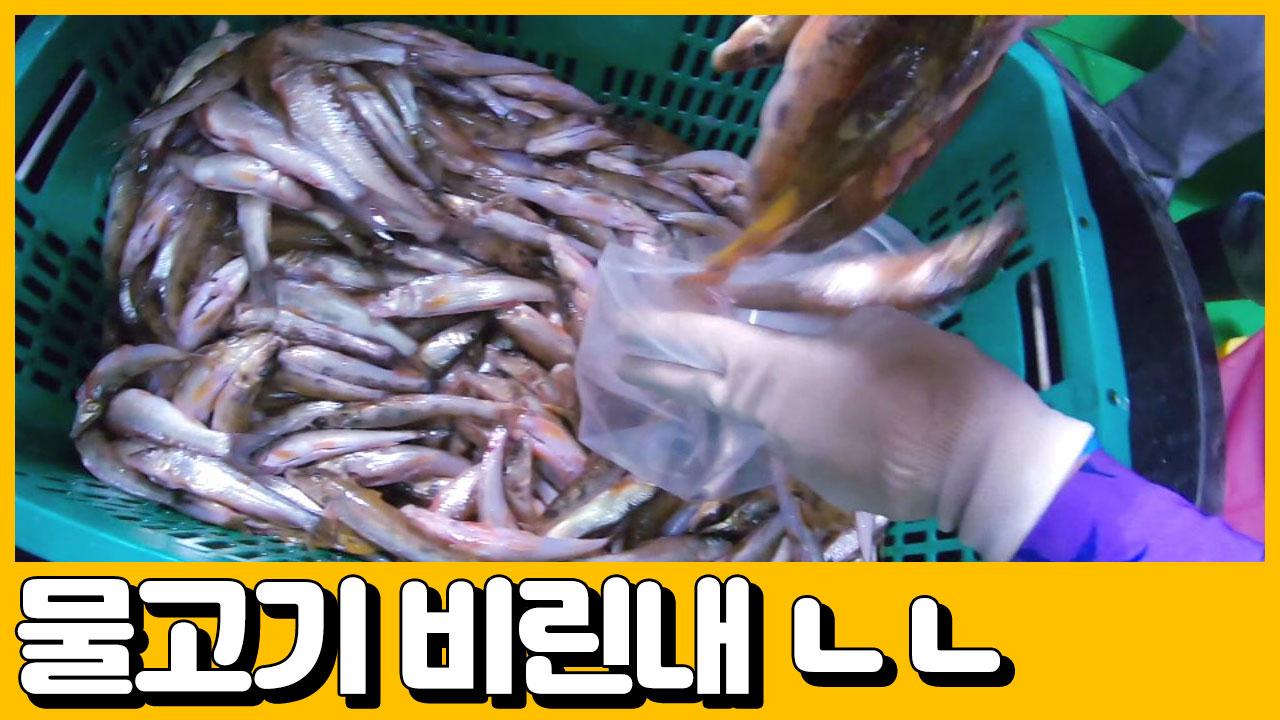 [선공개] 민물고기 하면 비린내!ㄴㄴ 갑부의 어죽은 다....