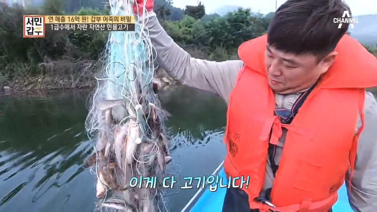 *자연산 민물고기 낚시* 그물에 가득 잡힌 물고기들~ ....