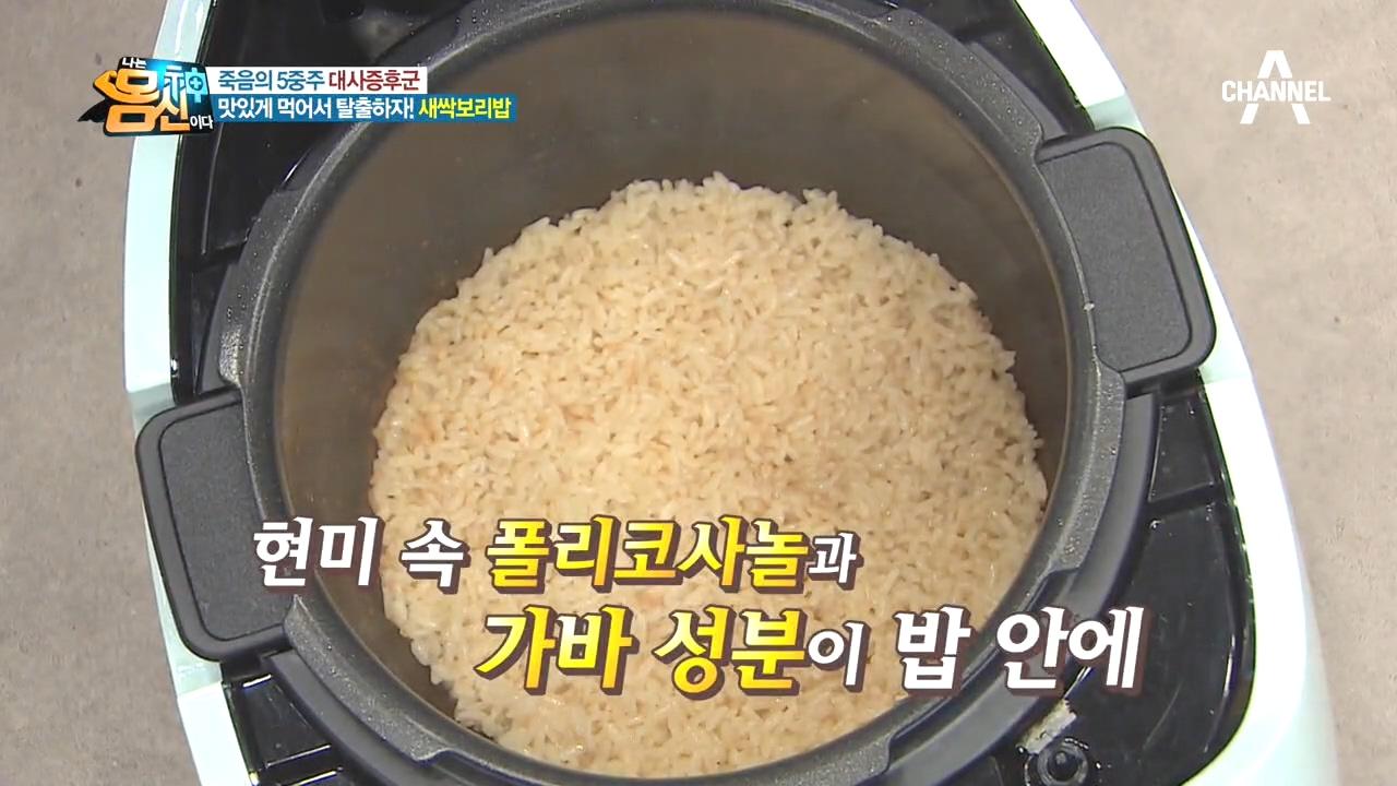 새싹보리 활용TIP! 영양 가득 '새싹보리밥' 먹고 대....