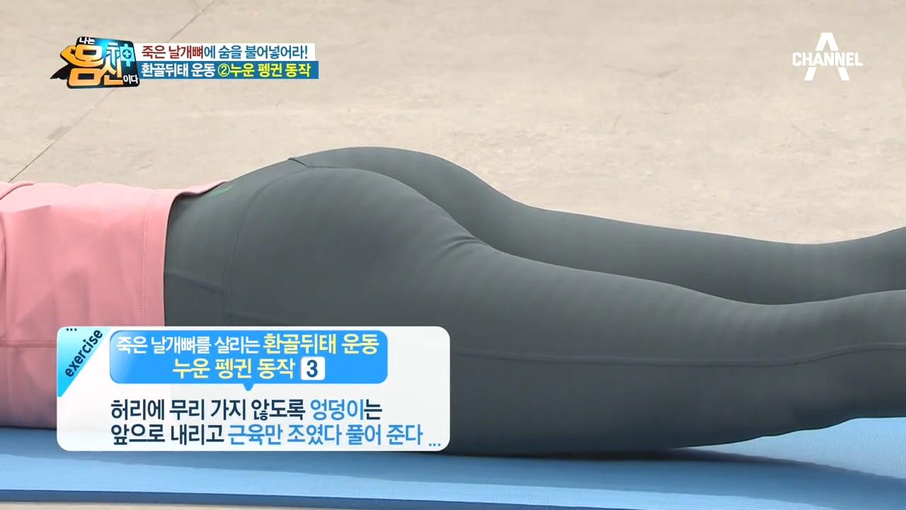 날개뼈 살리는 환골뒤태 운동 두 번째! 엉덩이 근육 사용하는 '누운 펭귄 동작'