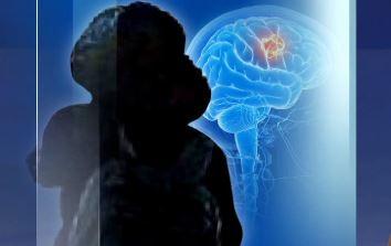 정경심 뇌종양 진단서 보니…병원명·의사 이름 빠졌다