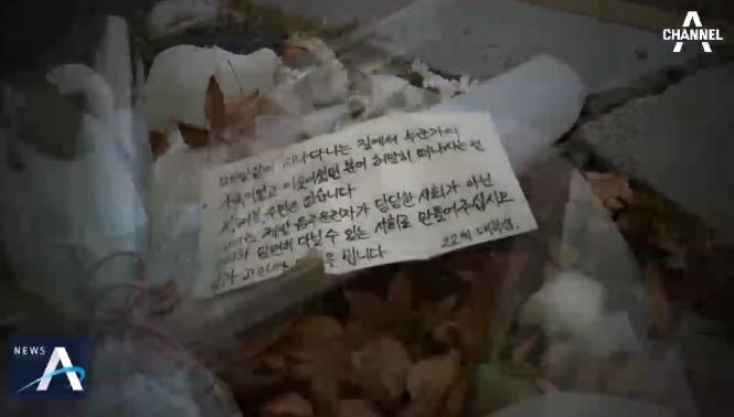 """또 음주운전에 희생된 시민…""""아침 단속 강화해야"""""""