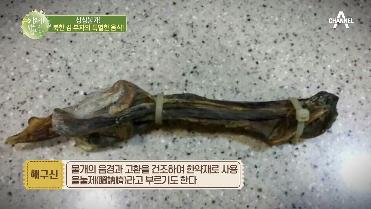 상상불가한 김 부자의 애호 음식! 김정일은 '물개'를 ....