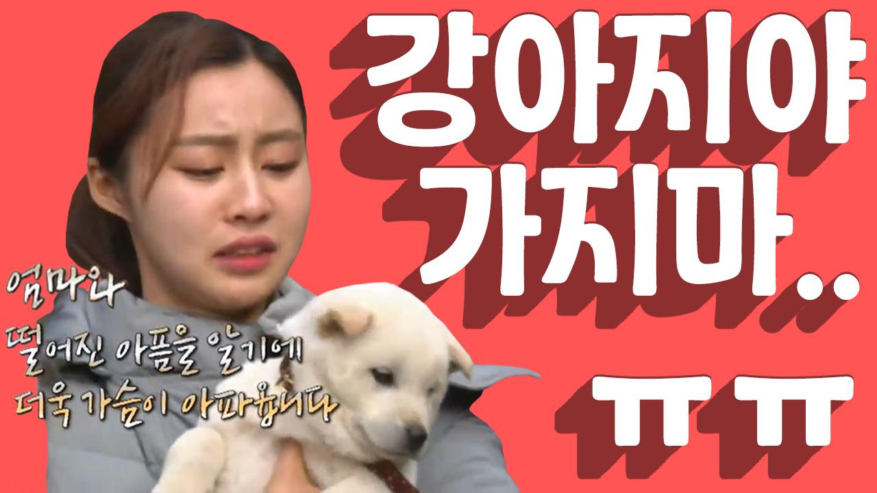[세이하이 탈북미녀] 정든 강아지를 떠나보내는 북한미녀....