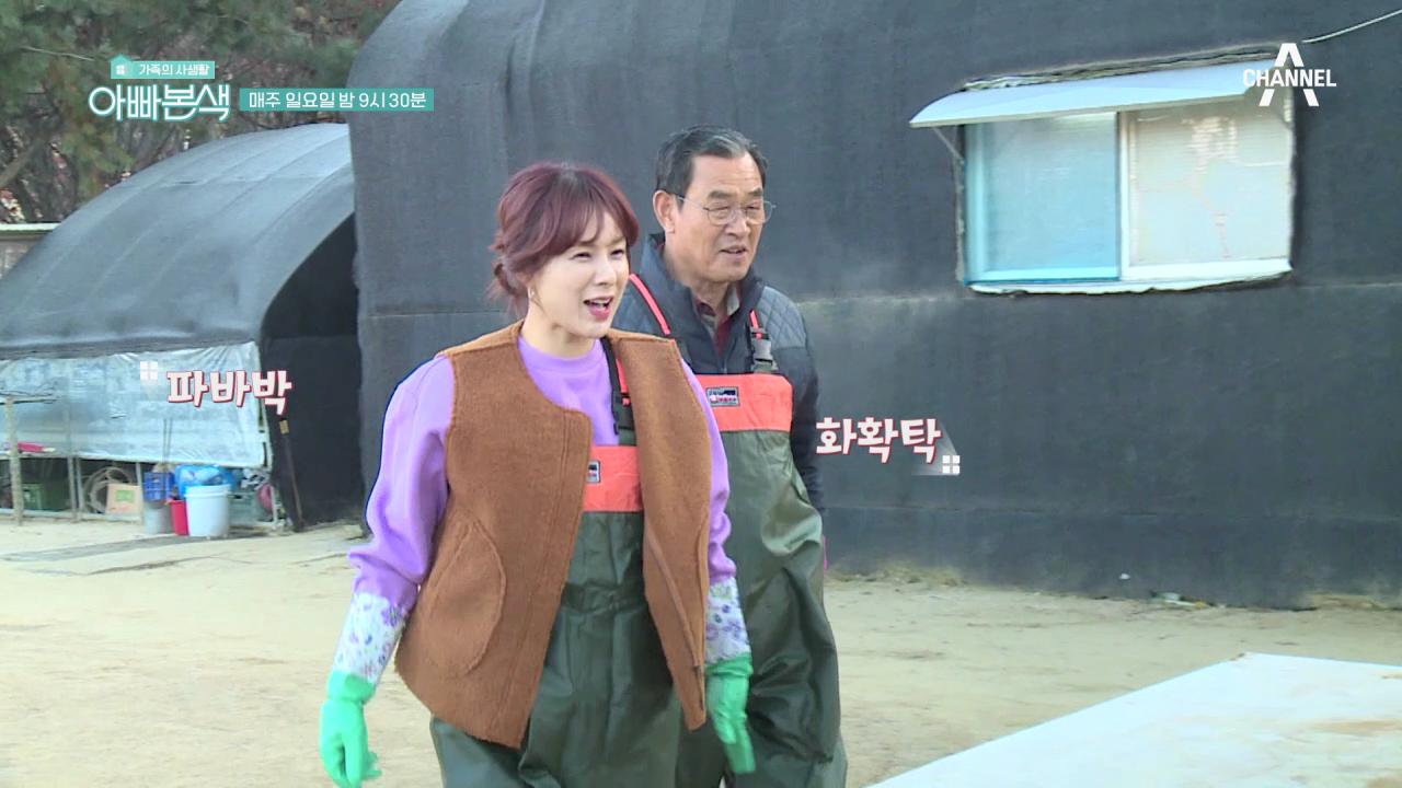 [선공개] 채연, 우리 집 김장만 120포기?