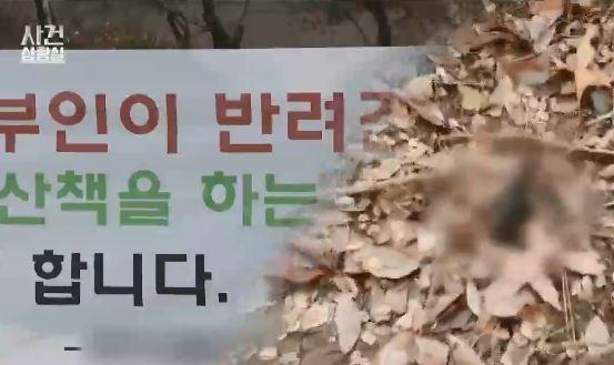 [뉴스태그]강남 아파트 '개똥 갈등' / 롯데리아 '난....