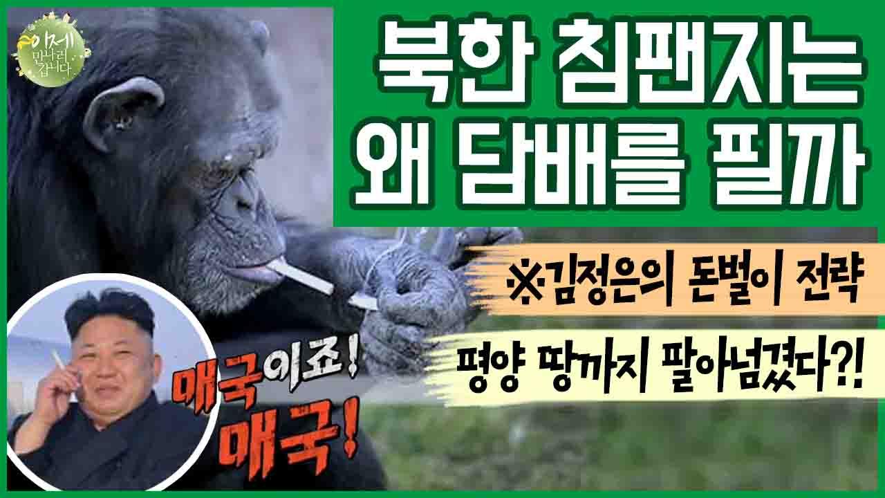 [이만갑 모아보기] 김정은의 충격적인 돈벌이 수단! 평....