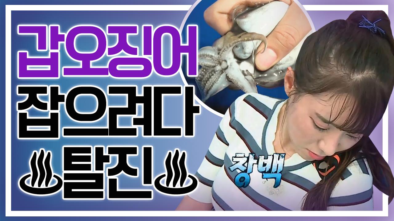 [세이하이 탈북미녀] 북한 미녀의 '갑오징어 사냥기' ....