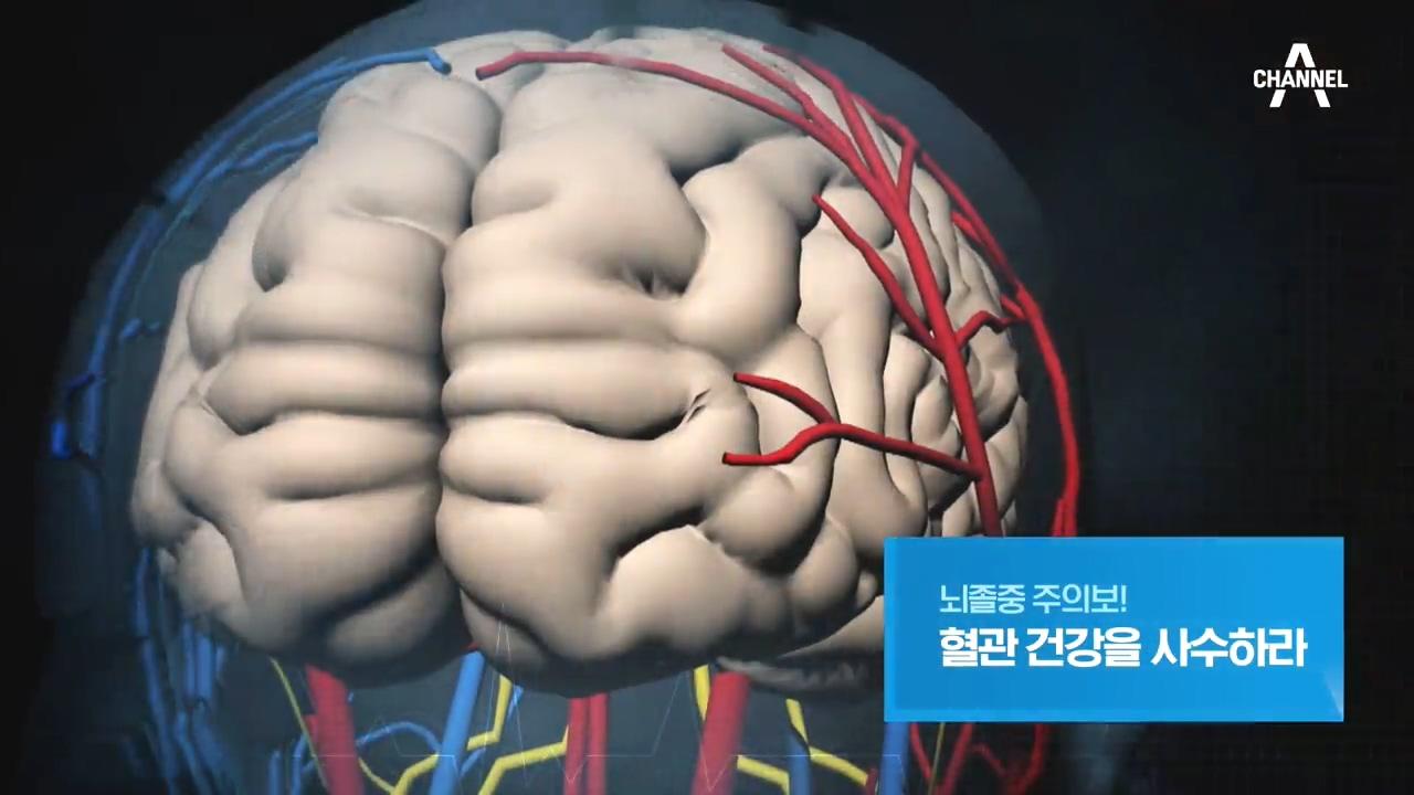 특별기획 뇌졸중 주의보! 혈관 건강을 사수하라