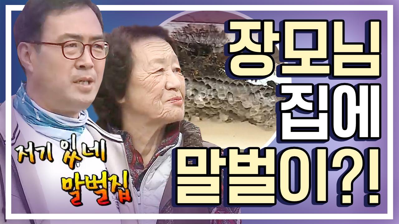 [세이하이 탈북미녀] 제리 장모님댁 최대 위기! '말벌....