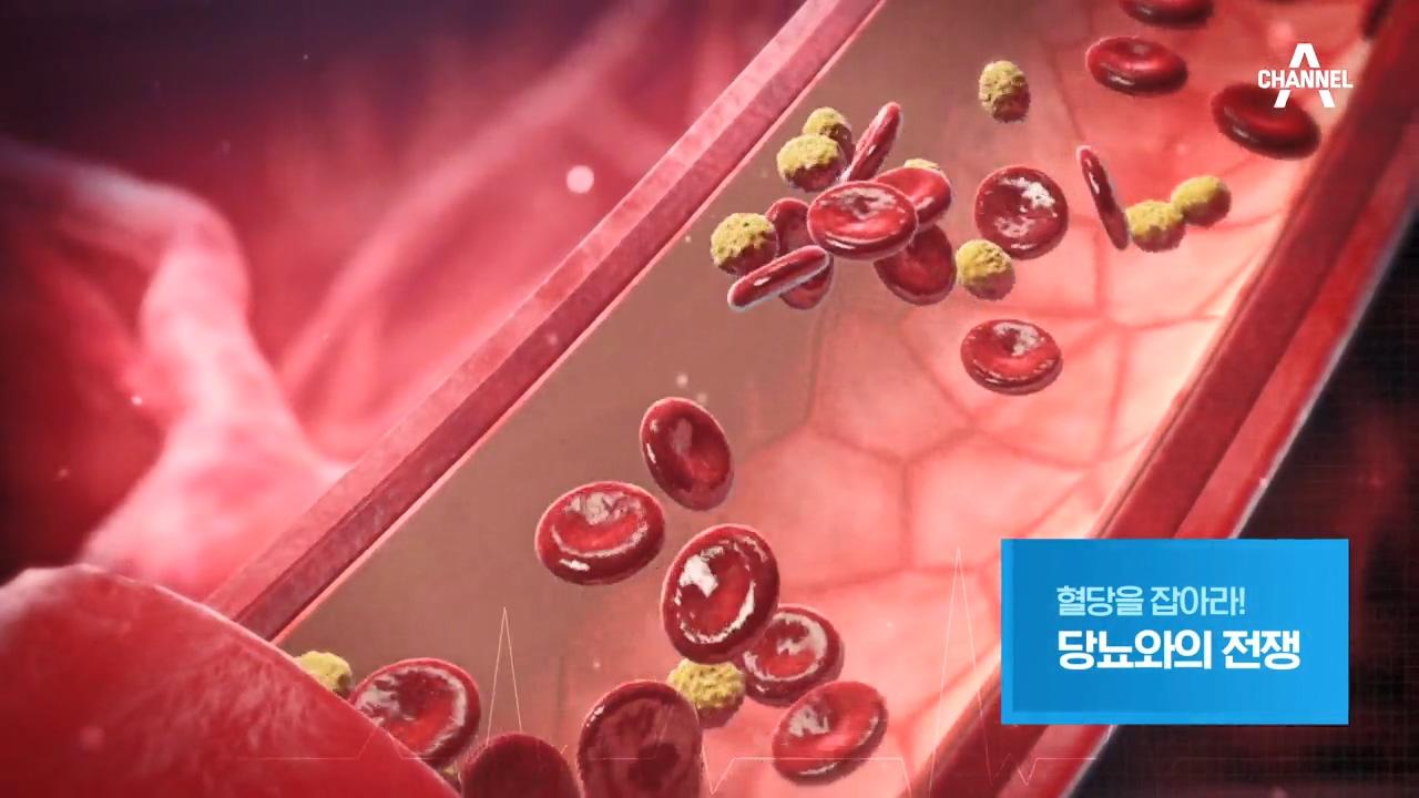 특별기획 혈당을 잡아라! 당뇨와의 전쟁