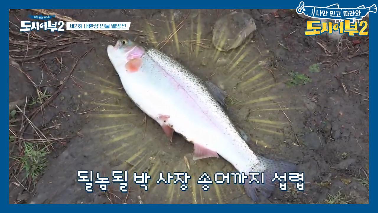 박 프로의 향어 9연타에 위기감 느낀 상렬;; 고정 위....