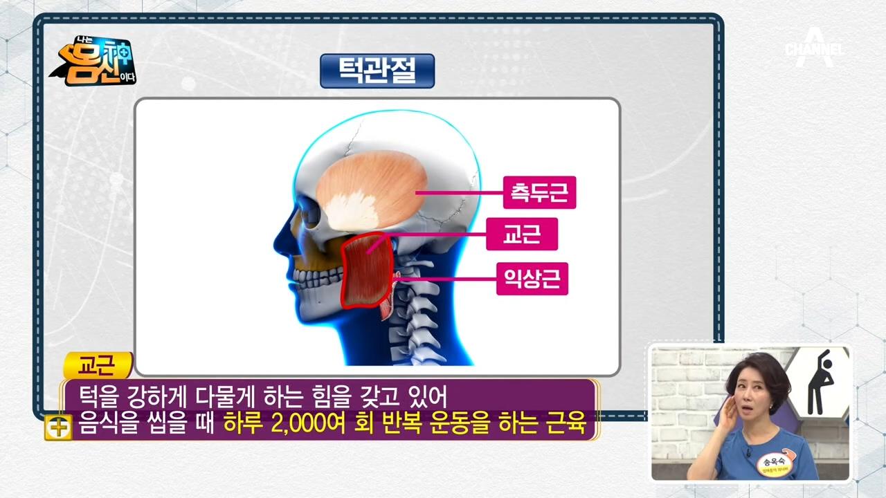 전신 건강을 위협하는 '얼굴의 심장' 턱관절에 주목하라....