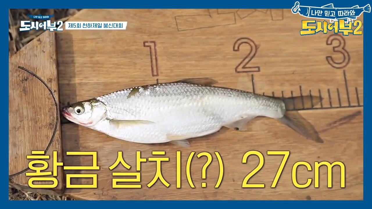 ♥감동♥ 낚시 10시간 만의 첫 HIT! '살치' 잡고....