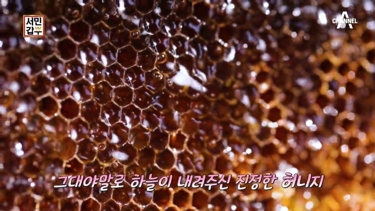 서민갑부 281회