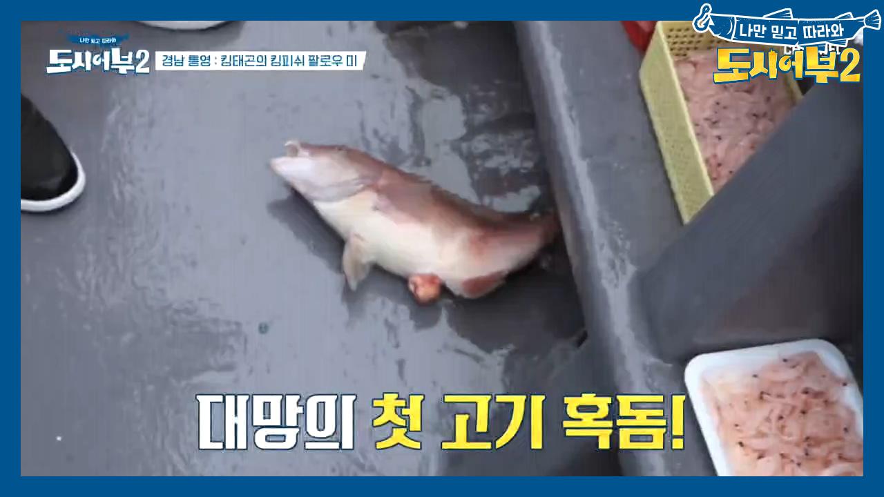 (물었다~) 경규의 놀림감이 된 박 프로! 바닥에 걸린....
