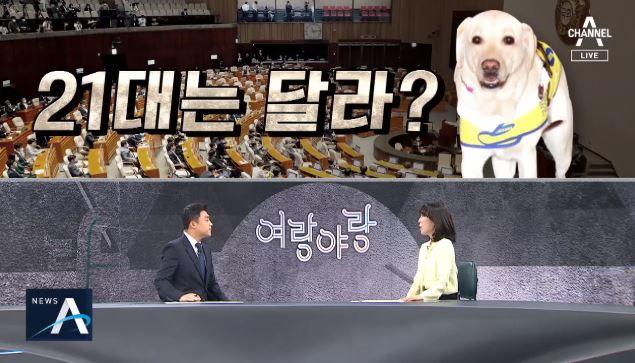 [여랑야랑]21대 국회는 달라질까? / '또 김해영'의....