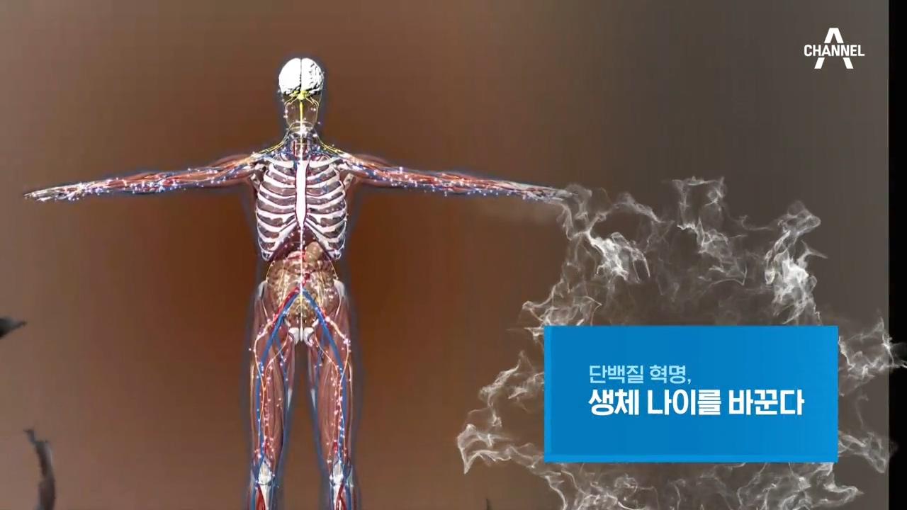 특별기획 단백질 혁명, 생체 나이를 바꾼다