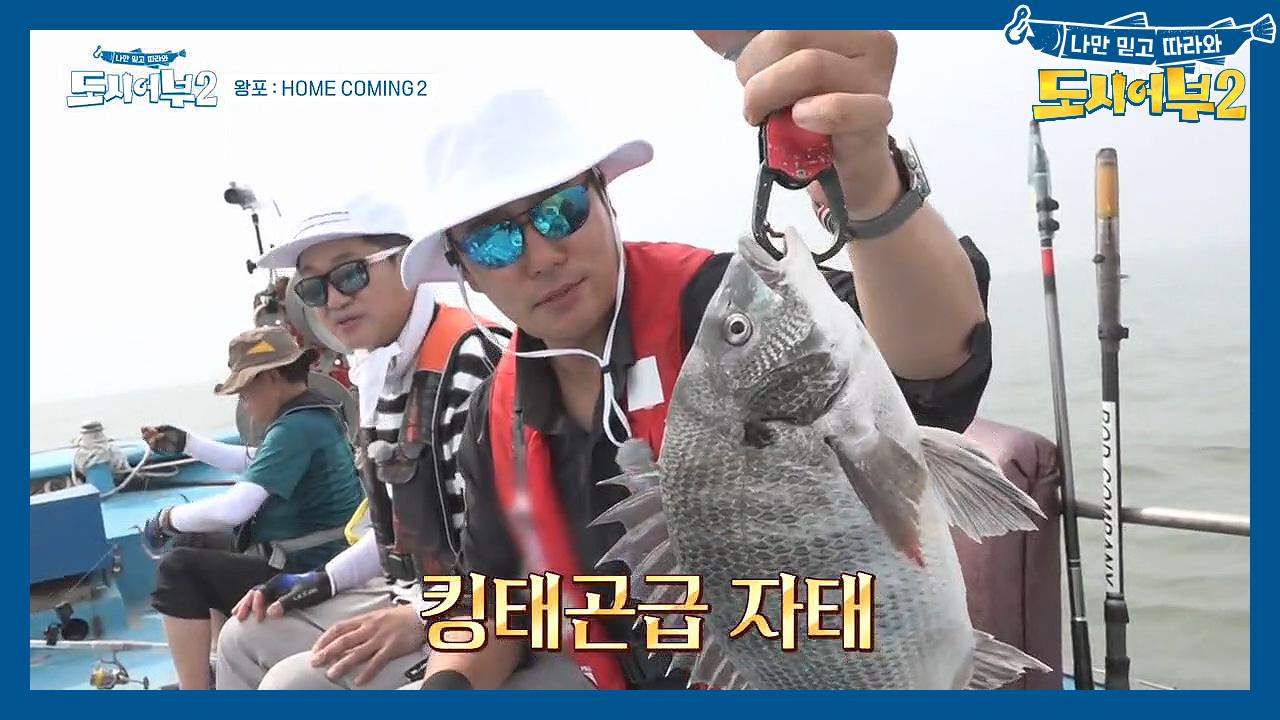 ♨약올리기X100♨ 메인호의 연속 꽝에 응답하는 킹태곤....