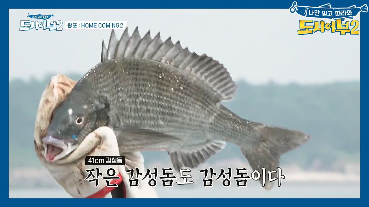 ↖진철 연속 히트↗ 할당량(?) 채워가는 박 프로^^b....