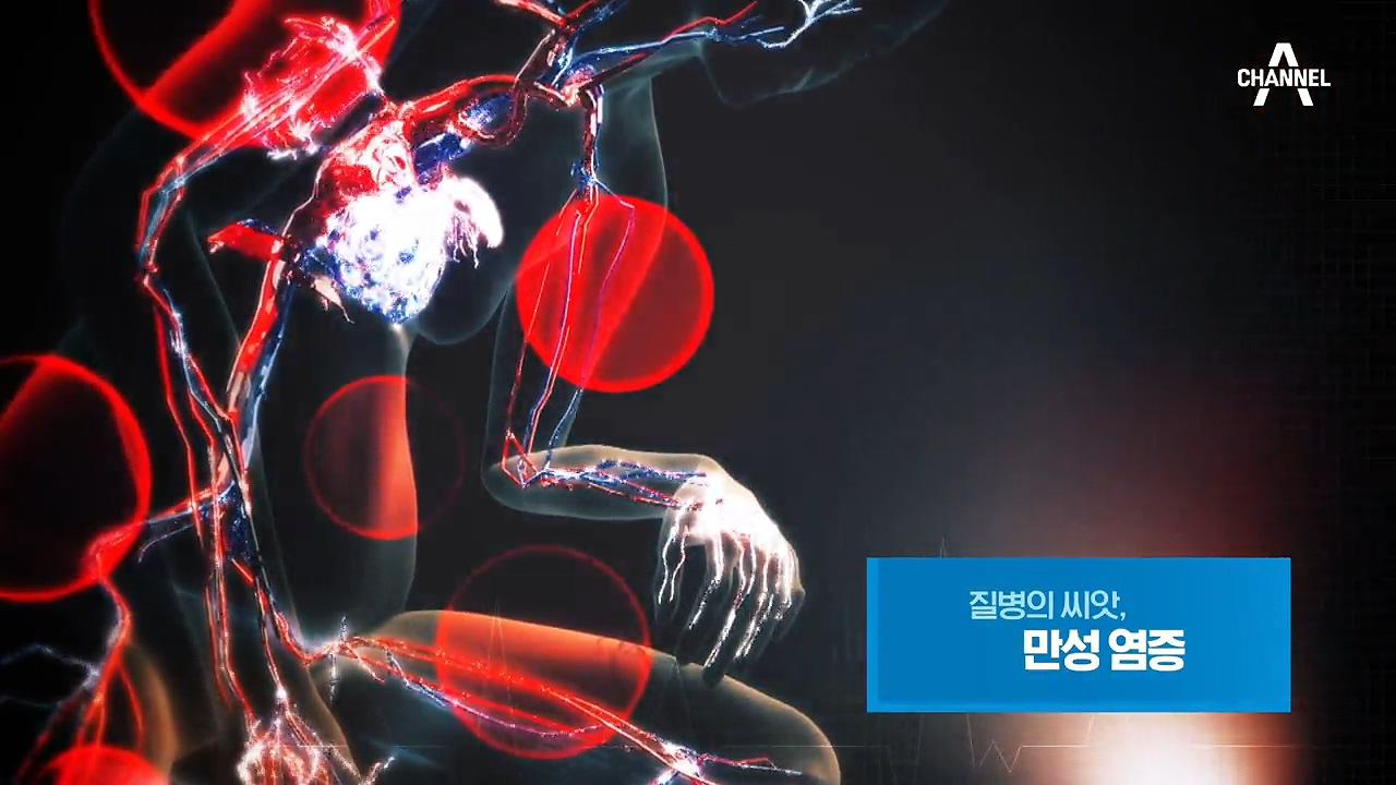 특별기획 질병의 씨앗, 만성 염증