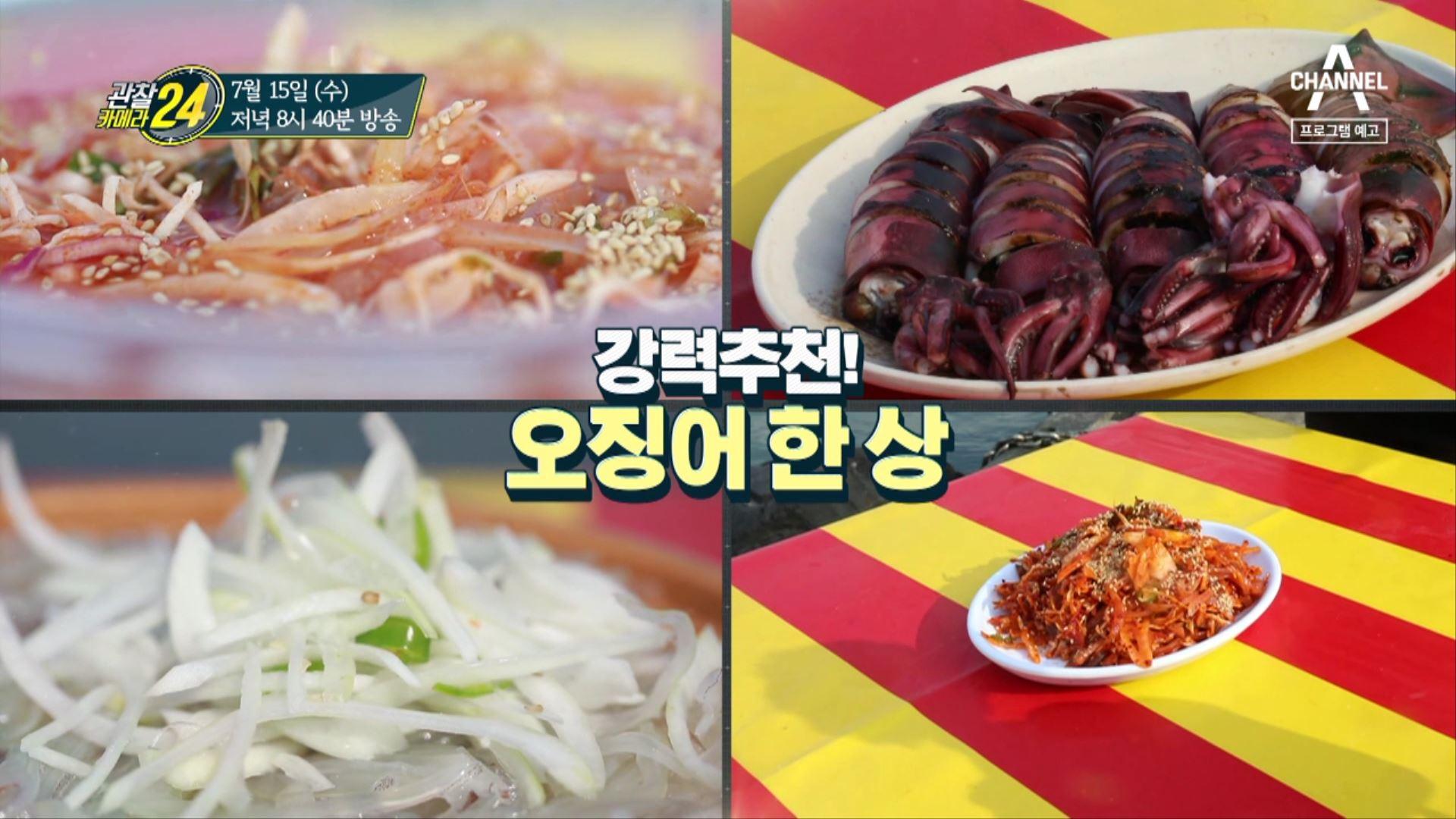 [예고] 7년 만의 컴백! 동해 오징어가 풍년이오~