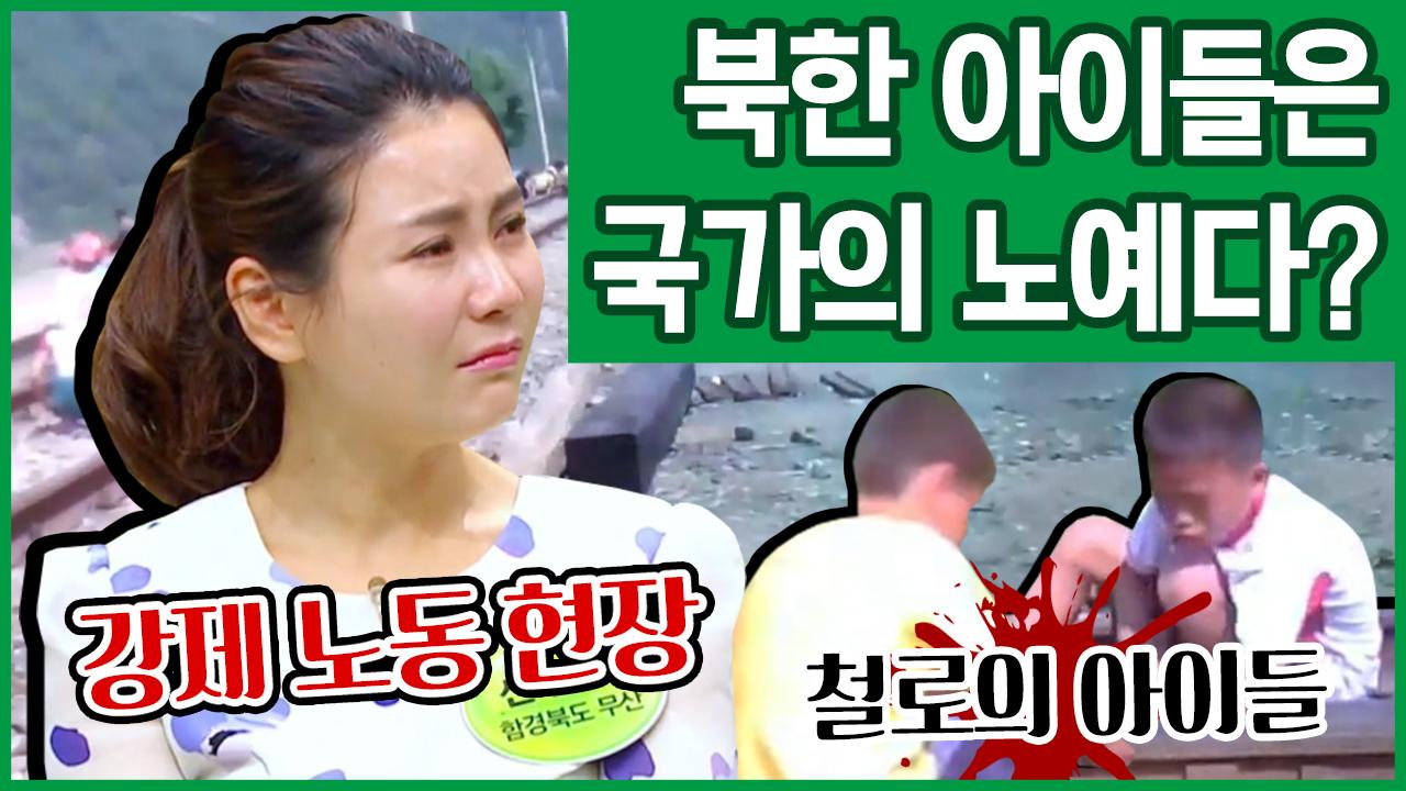 [이만갑 모아보기] 김정은을 위해 일하는 아이들! 북한....