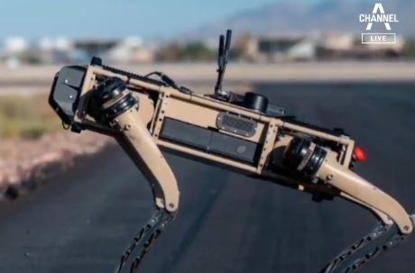영화가 아닌 현실…미군 훈련에 '로봇 군견' 출동