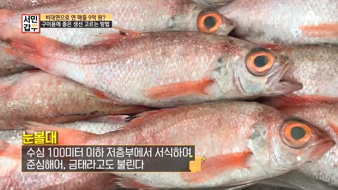 소리없는 전쟁, 경매! 갑부가 알려주는 좋은 생선 고르....