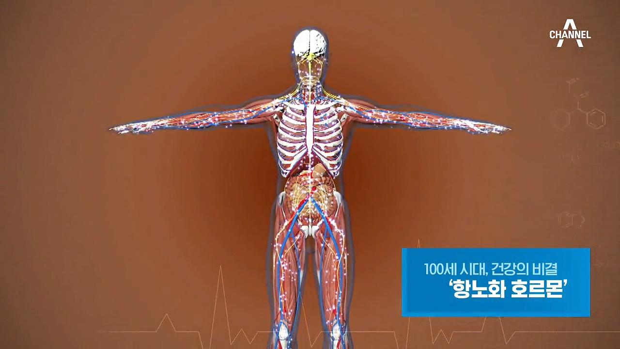 특별기획 100세 시대, 건강의 비결 '항노화 호르몬'