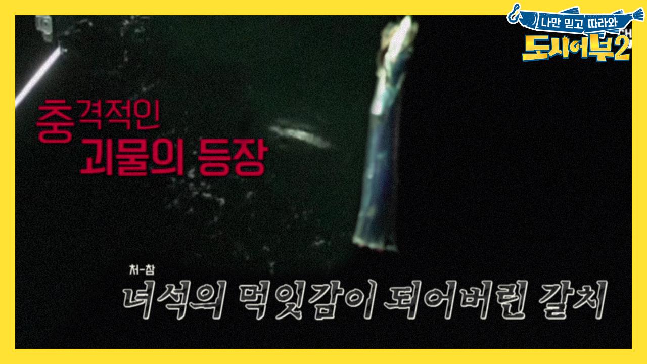 [선공개] 만.새.기 괴물의 등장! 미터급 만새기와 여....