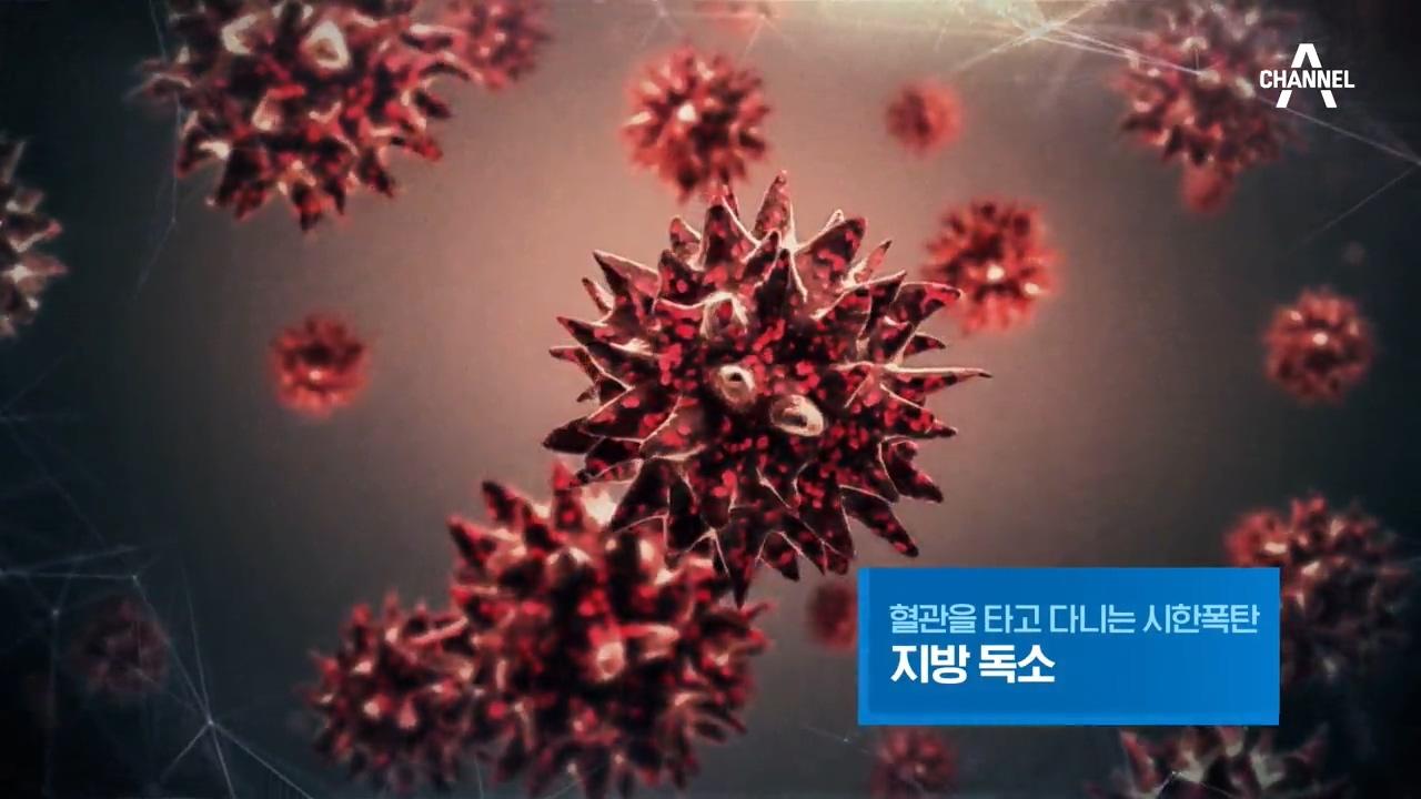 특별기획 혈관을 타고 다니는 시한폭탄, 지방 독소