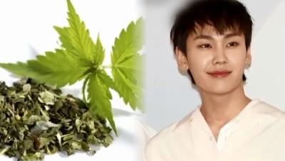 '비투비' 정일훈, 활동 기간 줄곧 '마약'…팬들, 퇴....
