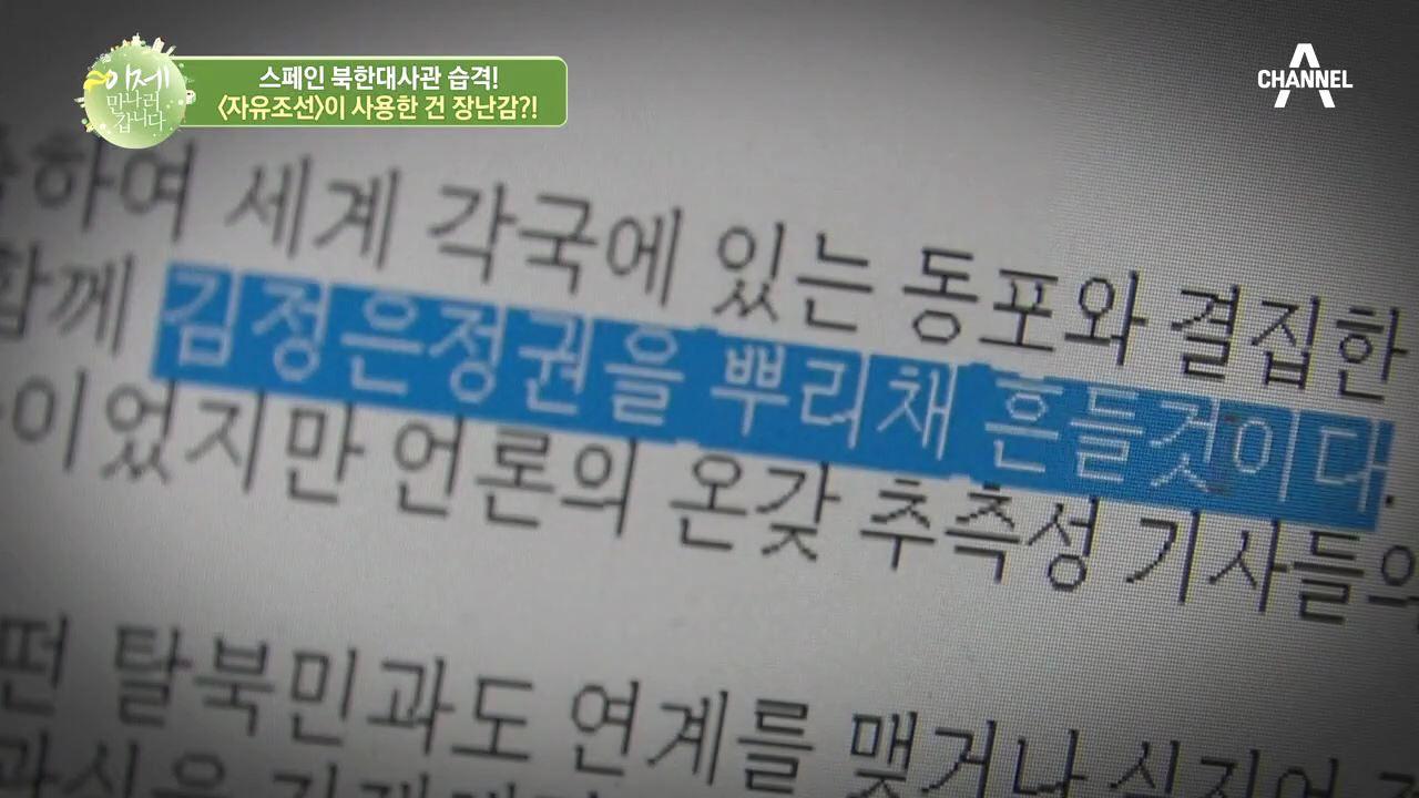 김정은 정권을 흔드는 '자유조선', 북한 대사관 습격 ....