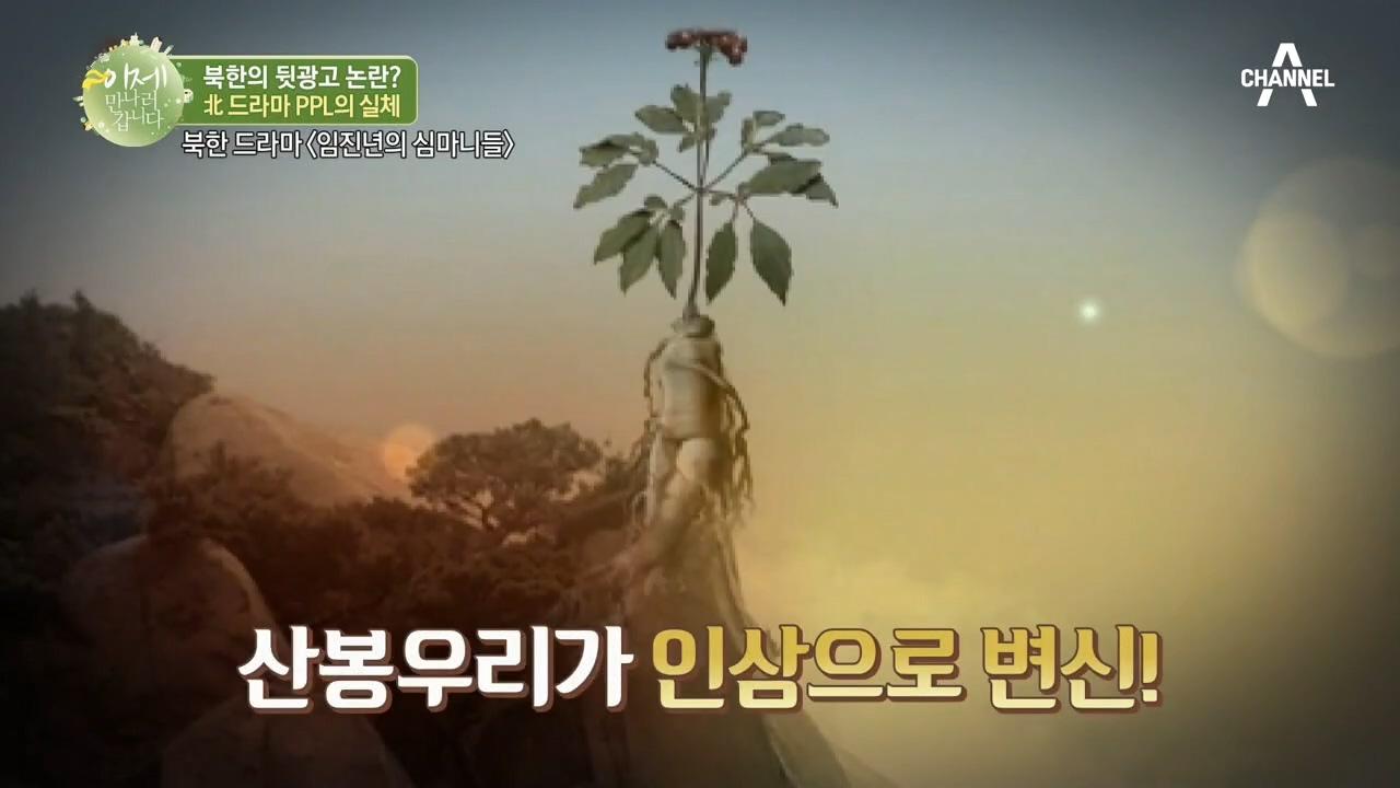 (북한방송에 뒷광고가?) 산봉우리가 고려인삼이 되는 북....