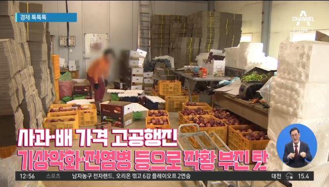 [경제 톡톡톡]사과·배 가격 고공행진…작황 부진 탓