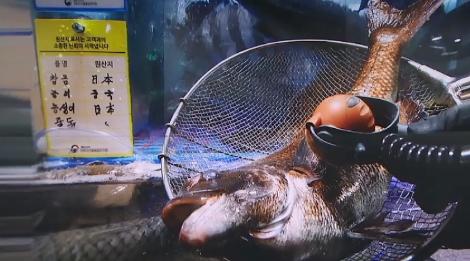 """일본산 수산물에 소비자들 """"불안"""" 상인들 """"분통"""""""