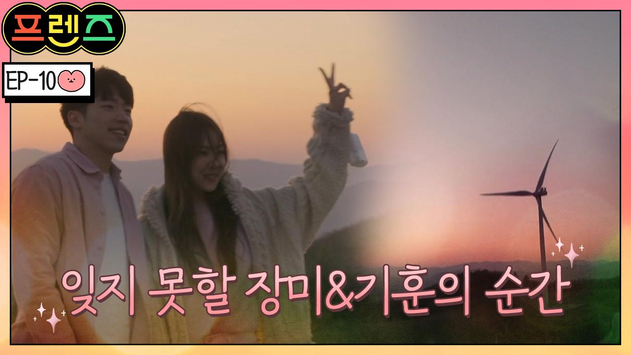 [풍경 맛집] 강릉 안반데기, 잊지 못할 아름다운 장미....