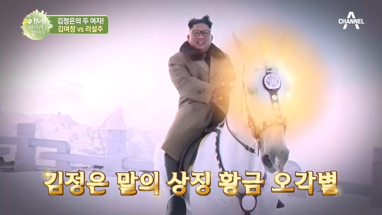 김정은 & 김여정 말에게만 붙은 '황금☆오각별'! 北의....