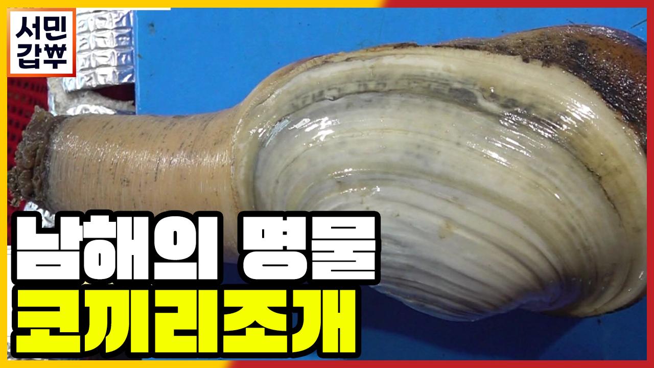 [선공개] 괜히 코끼리가 아니네!? 이것이 진짜 오리지....